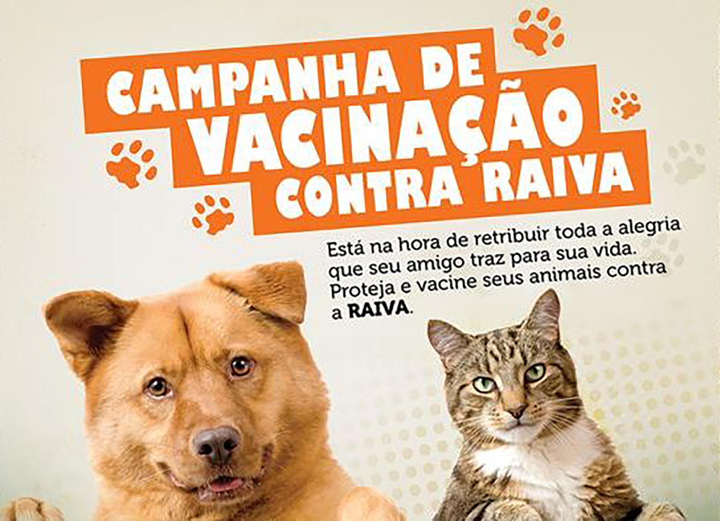 Vacinação contra a ravia começa em Paraguaçu