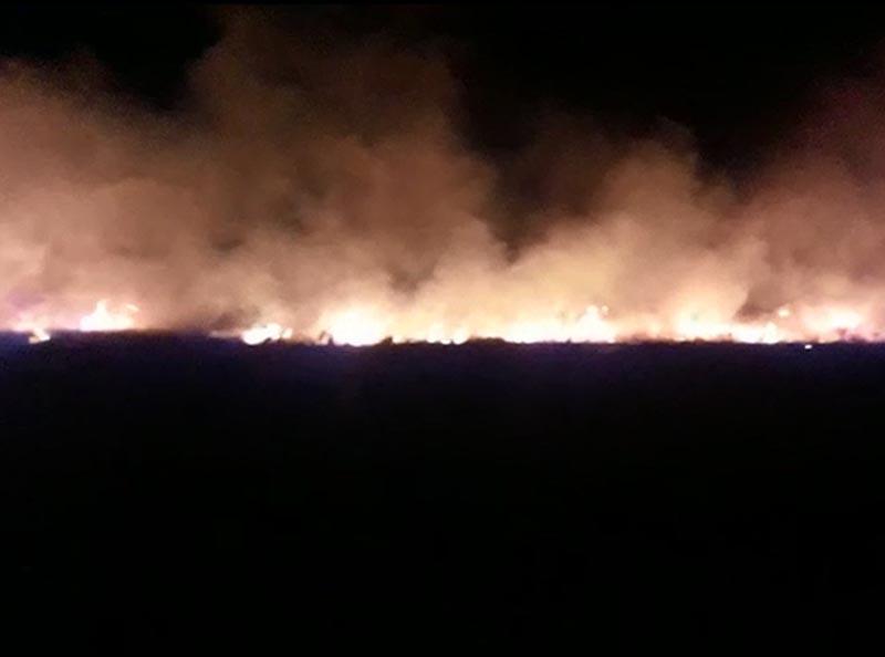 Incêndio de grandes proporções atinge mata e mobiliza bombeiros de Assis