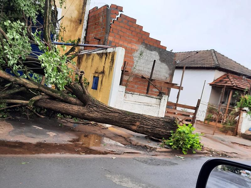 Defesa Civil faz o levantamento dos estragos causados pelo temporal em Paraguaçu