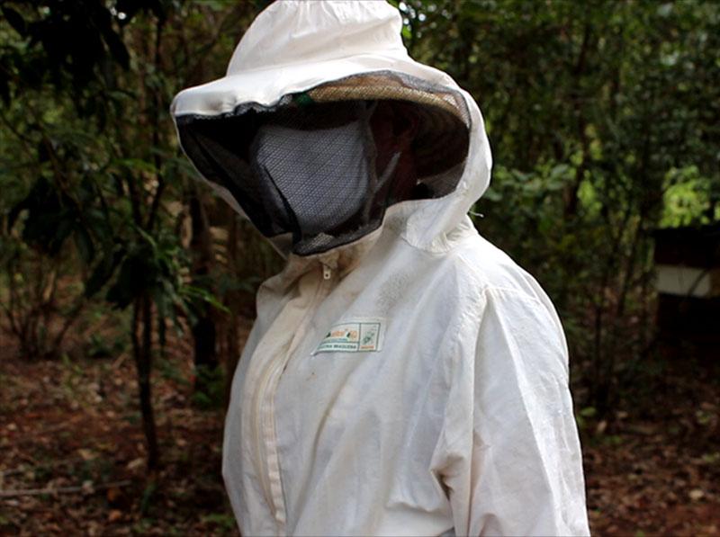 Apicultor fala sobre o manejo de abelhas em Paraguaçu e a importância da atividade