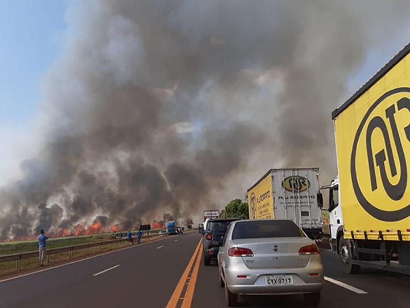 Incêndio em canavial fecha rodovia em Tarumã