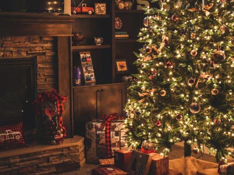 Árvore de Natal: conheça a história e o significado