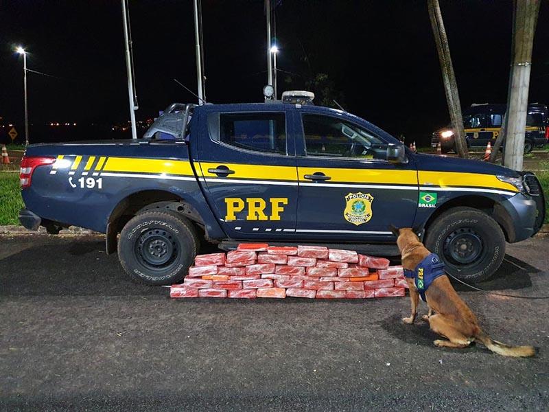 Polícia Rodoviária Federal apreende mais de 60 kg de maconha dentro de ônibus em Ourinhos