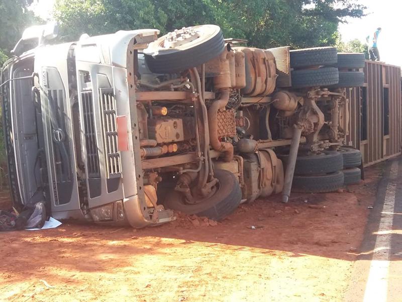 Cinco bovinos morrem após caminhão tombar em rodovia de Rancharia