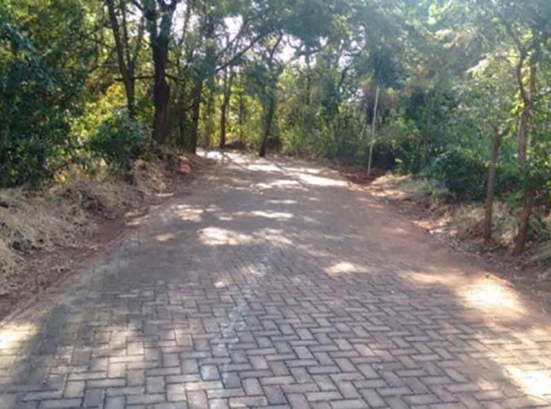 Pistas de caminhada deverão ser reabertas para uso da população