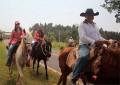 Cavalgada em Lutécia reúne comitivas de toda a região